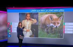 """مذيعة مصرية تعتذر بعد """"تعذيب"""" ثعلب أمام الكاميرات"""