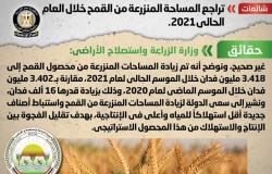 الحكومة تنفى تراجع المساحة المنزرعة من القمح خلال العام الحالي 2021