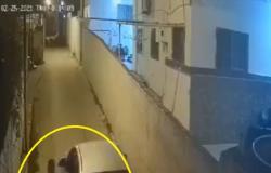 فيديو مرعب.. لحظة محاولة خطف فتاة بالأردن