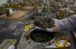 """""""الغذاء والدواء"""": ضبط أكثر من 106 أطنان من منتجات الأغذية المخالفة بالرياض"""