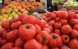 مواد غذائية لا ينصح بتناولها مع الطماطم.. تعرَّف عليها