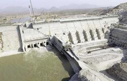 خبير: اجتماع إثيوبيا مع مندوبي دول حوض النيل محاولة لـ«شق الصف الإفريقي»