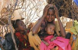 مذبحة مروعة.. مقتل مئات الإثيوبيين على أيدي ميليشيات مسلحة