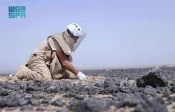 """""""مسام"""" ينتزع أكثر من 1,200 لغم في اليمن خلال أسبوع"""