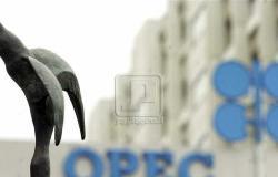 البيت الأبيض يجري حوارا مع أوبك بشأن أسعار النفط