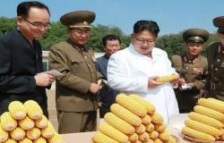 الأمم المتحدة تحذّر من مجاعة محتملة في كوريا الشمالية