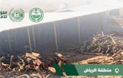 """""""الأمن البيئي"""" يضبط موقعًا لبيع الحطب المحلي بمدينة الرياض"""