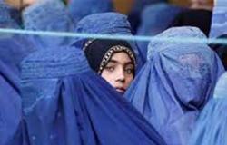 ليصبحن زوجات للمقاتلين مستقبلاً.. طالبان تشتري القاصرات مقابل الماشية والمال