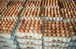 «الثروة الداجنة»: ٥ جنيهات تراجعًا بسعر بيض المائدة بعد تدخل الحكومة