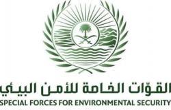 ضبط 14 مخالفا لنظام البيئة