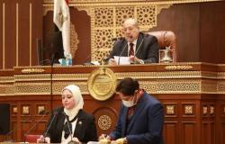 نائب بـ«الشيوخ» ينتقد عدم توافق الحكومة على مشروعات القوانين المعروضة على المجلس