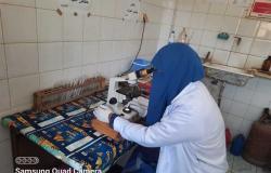 قوافل جامعة طنطا تساهم فى «حياة كريمة»: فحص 1161 حالة في ببسيون