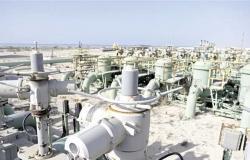 سنجر: برميل النفط سيصل لـ 100 دولار .. ومصر أمام تحد كبير بجانب أزمات المنطقة (فيديو)