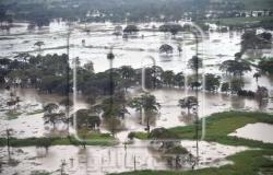 قبل «الهالوين».. عاصفة تغرق شمال شرق أمريكا وموجة ثانية متوقعة