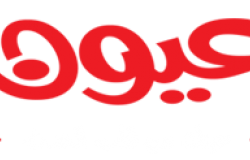 محتجون يغلقون خطًا نفطيًا جنوبي ليبيا