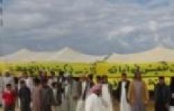 عشرات الأهالي يعتصمون بخيمة بدوية بالعلمين للمطالبة بمياه لزراعة الأراضي
