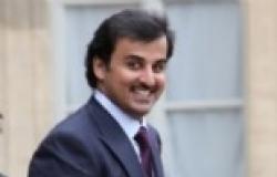 قيادي إخواني: أعتز بتصريح أمير قطر وتأكيده على دعمه للتيار الإسلامي