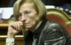 """وزيرة خارجية إيطاليا: الاستبعاد الكامل للإخوان يعرقل """"خارطة الطريق"""""""