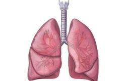 المنظار أحدث الطرق لعلاج حساسية الصدر (الربو )