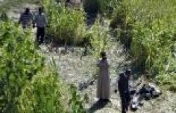 العربي: حادث سقوط الطائرة الحربية لم يؤثر على حركة الملاحة الجوية بالأقصر