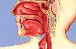 اضطراب العضلة العاصرة للمرىء يؤدى لصعوبة البلع