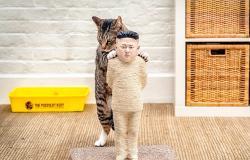 بالفيديو والصور.. قطط الحرية «تخربش» أعدائها