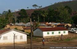 بالصور.. المصدر الأول لفيروس «إيبولا»: شجرة «وطواط» وطفل عمره عامان