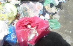 بالصور.. إلقاء مخلفات طبية شديدة التلوث وحى غرب الإسكندرية يغرم المستشفى