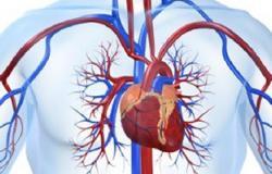 تحليل جديد يتنبأ باحتمالية الوفاة بأمراض القلب