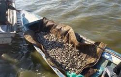 بالصور.. حملة أمنية لأزالة المخالفات ببحيرة البرلس بكفر الشيخ
